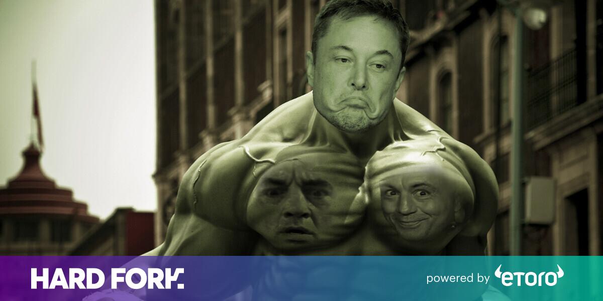 Reddit's greediest traders debate shorting Tesla ahead of Musk's Joe Rogan interview
