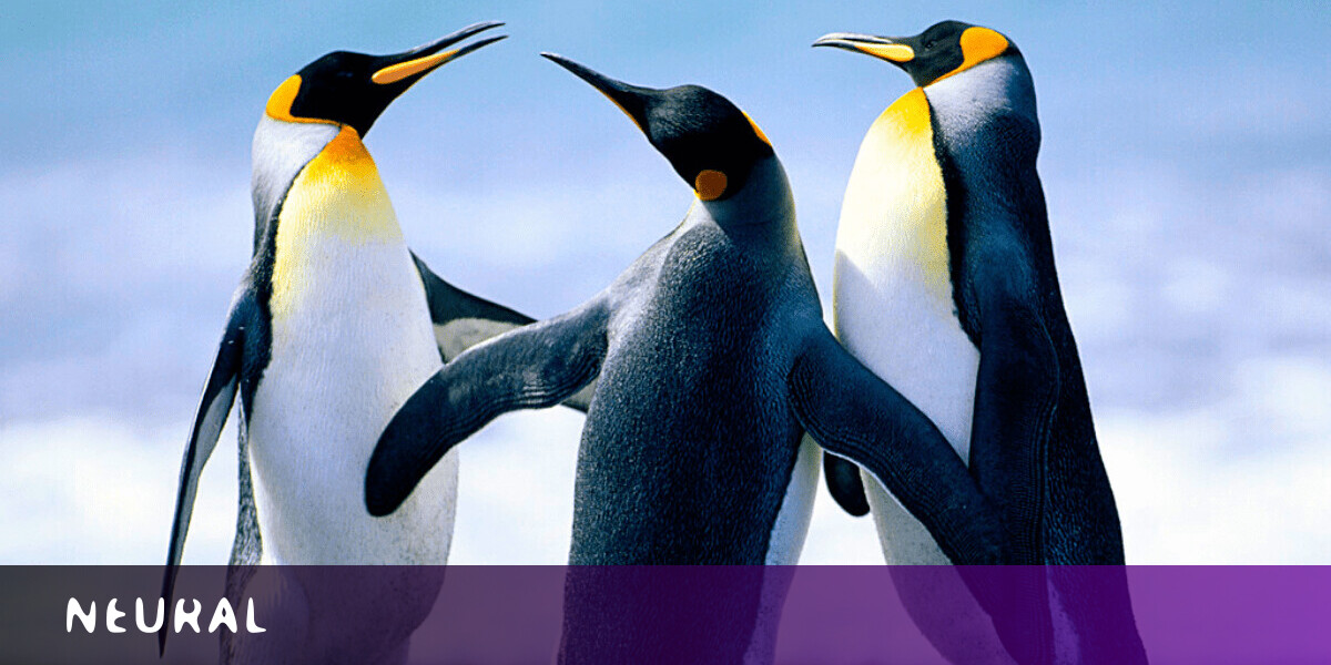 AI studies our photos to prove that nature makes us happy