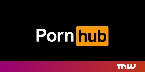 Pornhub User Actually Watches Porn For Science And To Rate Bed