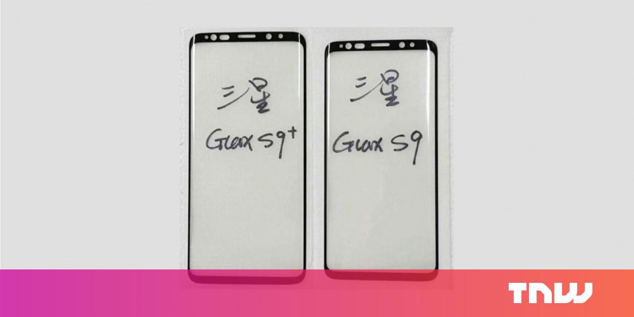 Dear Samsung, please don't cripple the smaller Galaxy S9