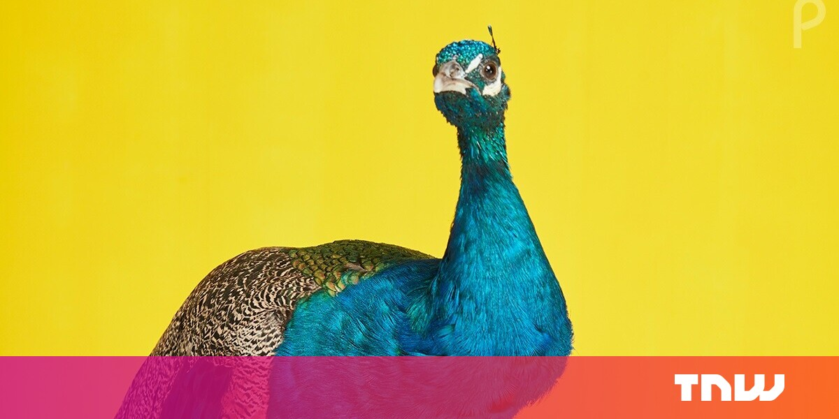 Image of article 'You can stream NBC Universal's Peacock service for free'