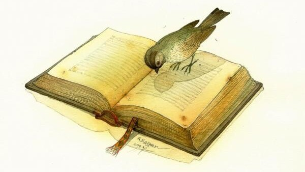 Twitter launches Literacy Day 2010 to eradicate illiteracy.