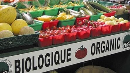Simply Organic HD: A beautiful iPad app for organic foodies