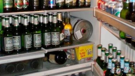 Forget Facebook and use The Fridge to plan your spring break