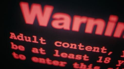 .XXX websites to adopt content and safety warning system