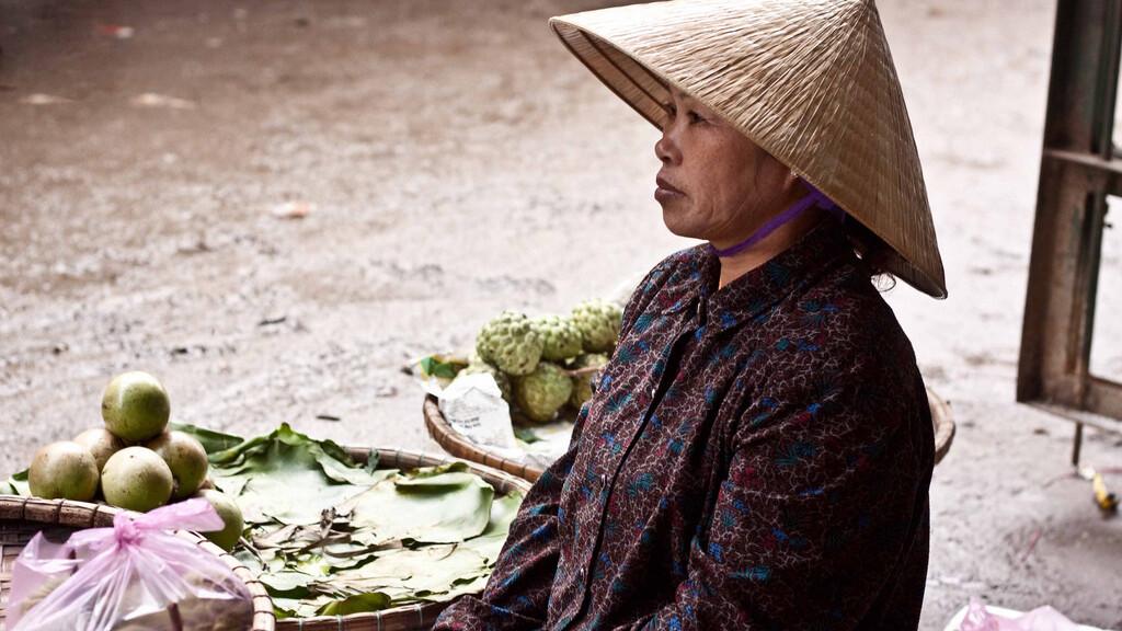Gates Foundation donates $30m towards rural Internet initiative in Vietnam
