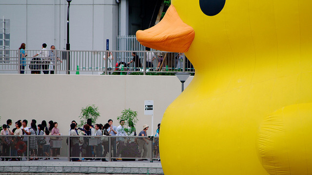 We bet you don't know who owns Duck.com and what it redirects to