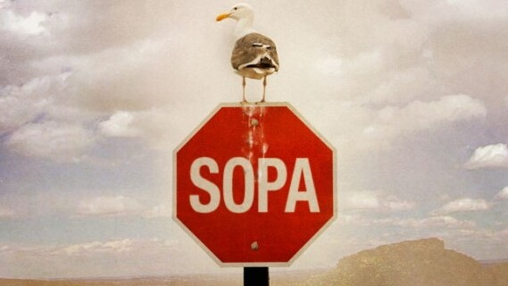 Google goes dark in protest over SOPA, but not how you would expect
