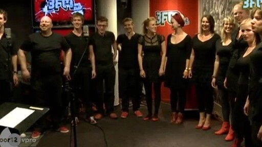Even if you don't like Dubstep, you'll love Skrillex sung by this Dutch choir