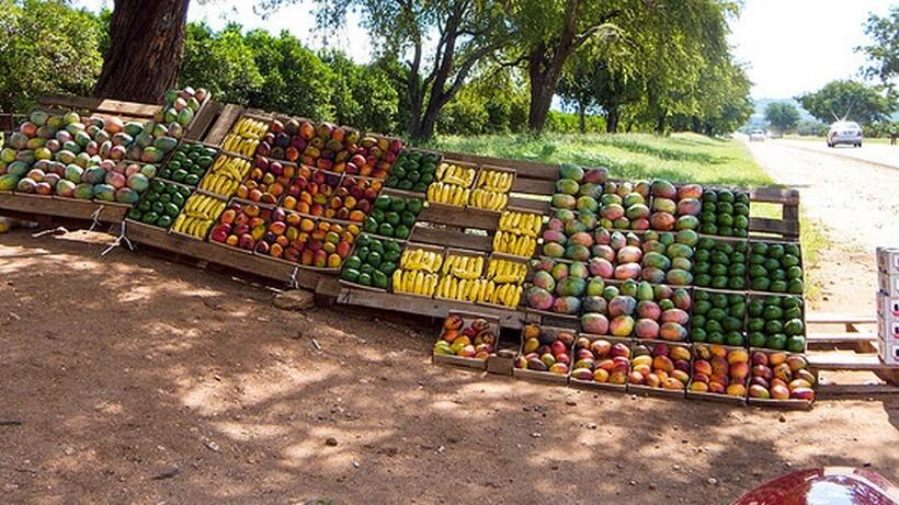 YottaMark takes on $24 million to grow its food tracking system, HarvestMark
