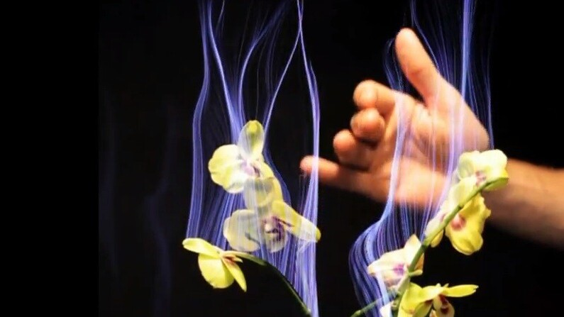 Incredible: Disney just figured out how to make any plant into a multi-touch sensor