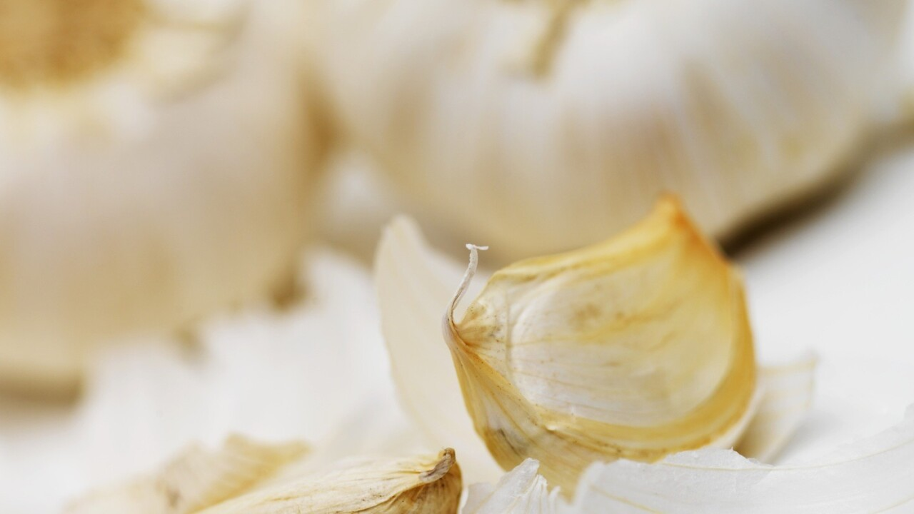 Garlic.js stores form values locally, so your users never lose any precious data