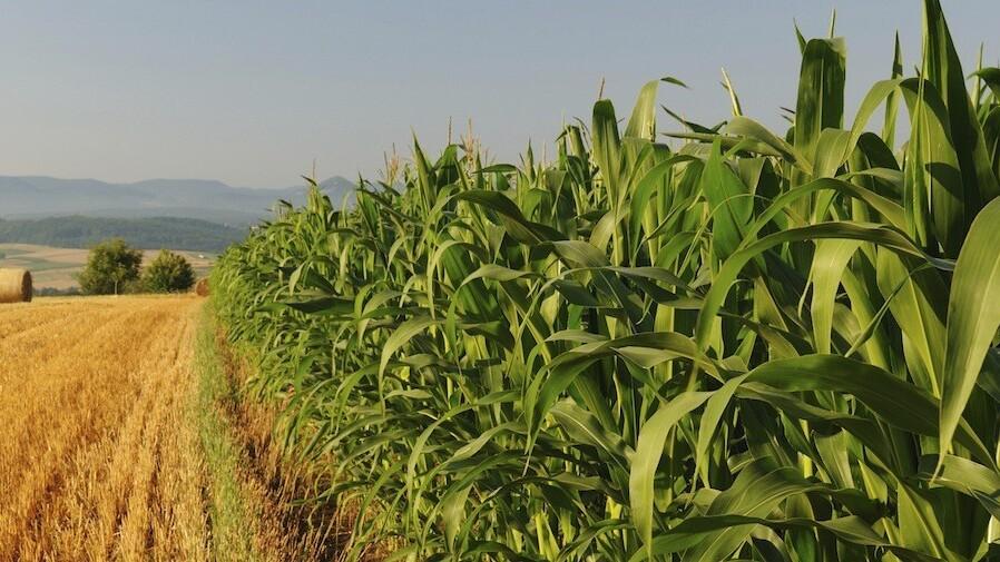 YC alum FarmLogs raises $1m from Huron River and Hyde Park to modernize farming industry