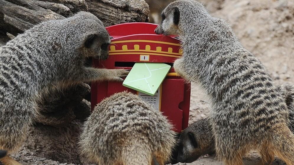 Swedish digital mailbox service Kivra acquires local rival Brevo