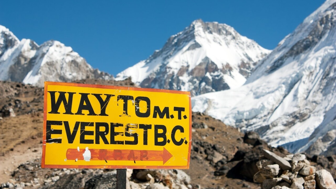 Everest app now helps people in the UK and Ireland achieve their goals [Video Interview]