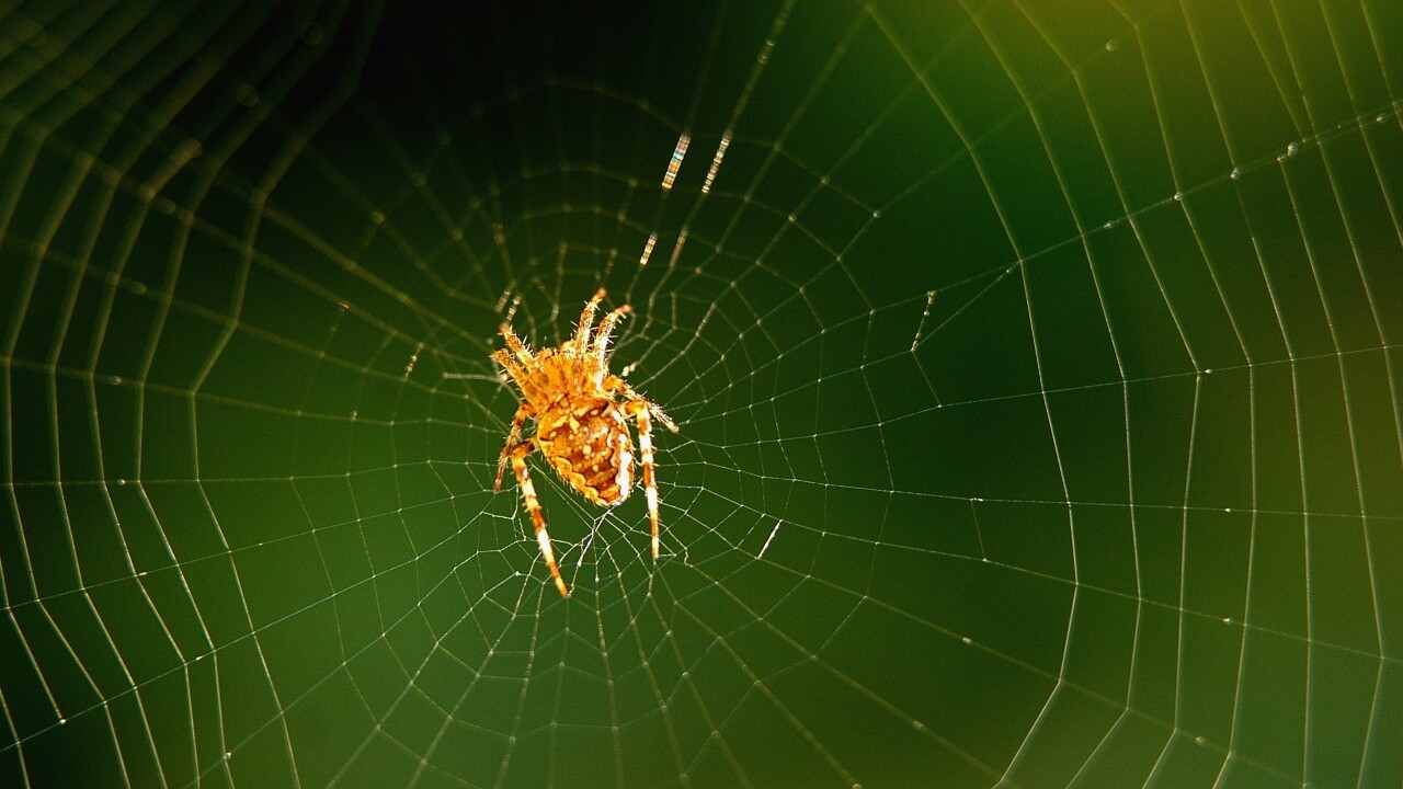 Google acquires cyber security startup Spider.io to help combat online advertising fraud
