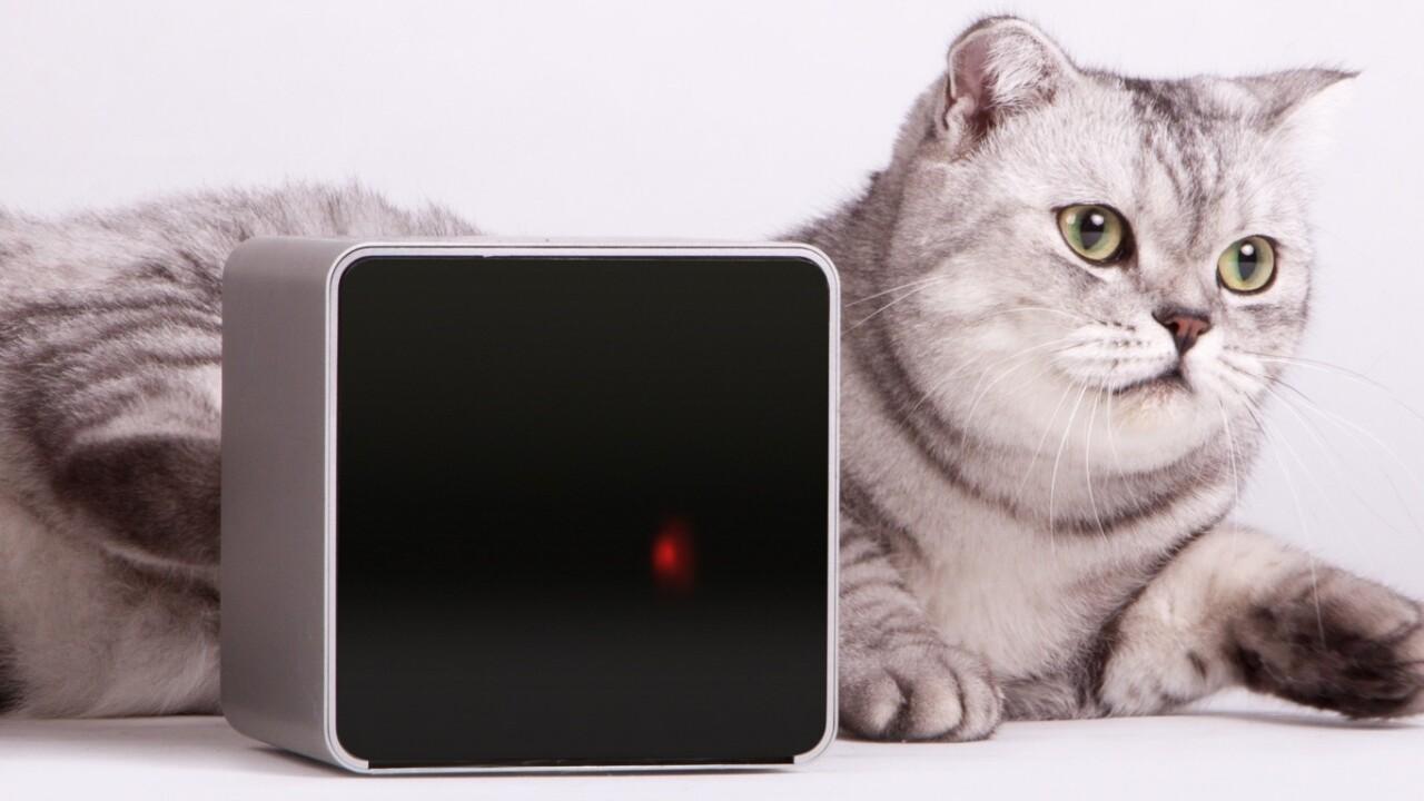 Life after Kickstarter: How Petcube is preparing its pet-focused gadget for the mass market