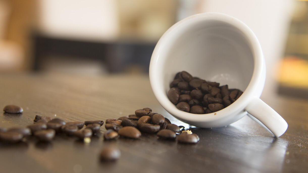 Coffee can wait: 5 lessons your intern really needs to learn this summer