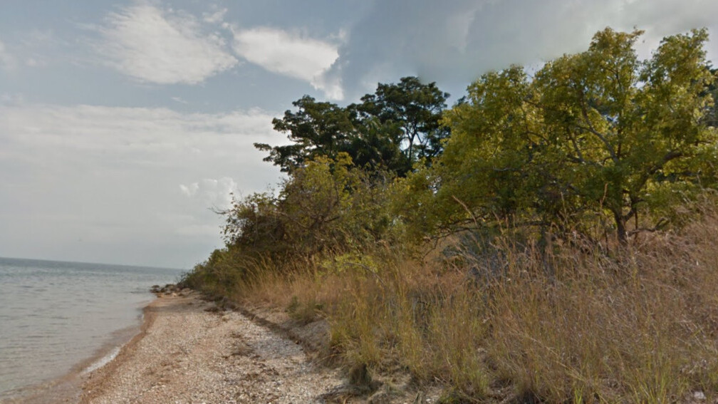 Google takes Street View inside Tanzania's Gombe National Park, famous for its chimpanzees