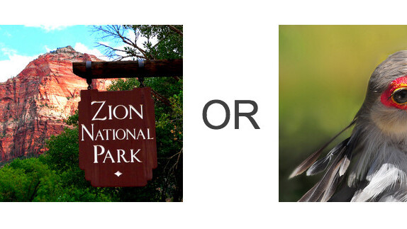National park or bird? Flickr knows for sure