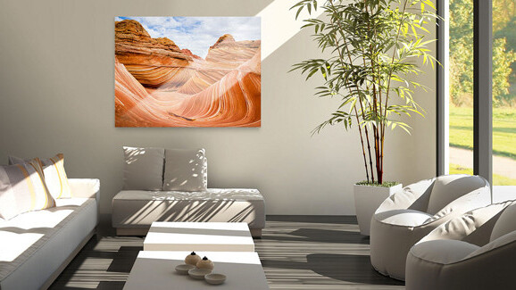 Redecorating? Choose fromup to 50 million FlickrCreative Commonsphotos for your walls