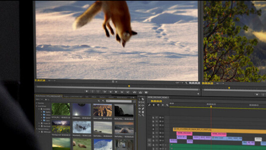 Adobe will showcase upcoming Creative Cloud video suite upgrades at broadcasters' annual meetup