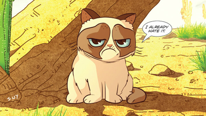 Grumpy Cat continues to dominate Web culture with a new comic book series