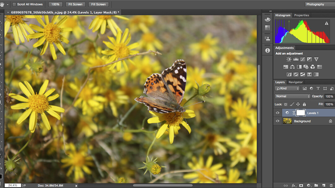 10 Photoshop alternatives that offer powerful editing and photo management controls