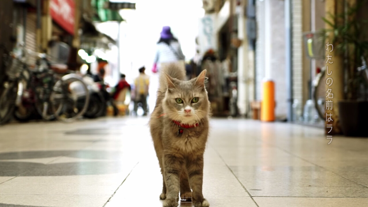Cat Street View is a furry, feline way to explore Japan