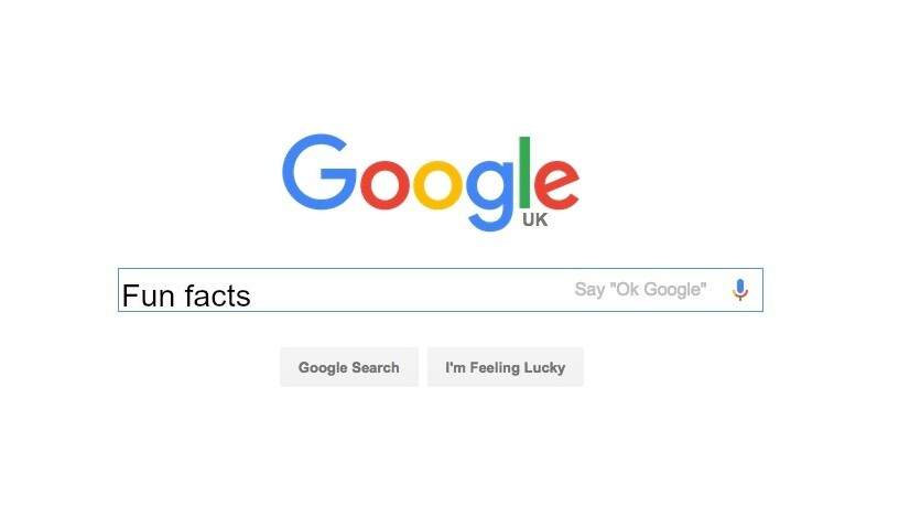 Google's new 'Fun Facts' feature is a procrastinator's dream