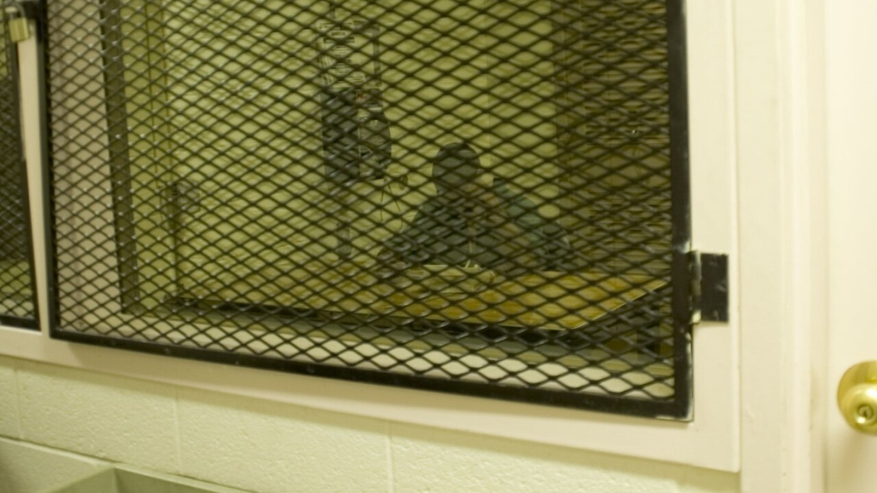 Massive US prison phone service breach shows inmates' calls to their lawyers aren't private