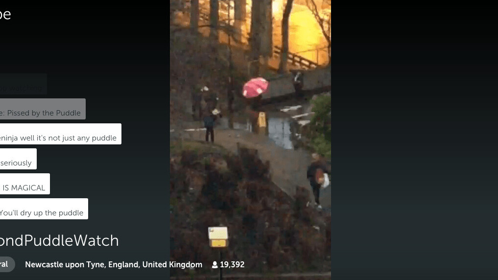 #DrummondPuddleWatch: 19,000 people in the UK watched a live stream of a puddle