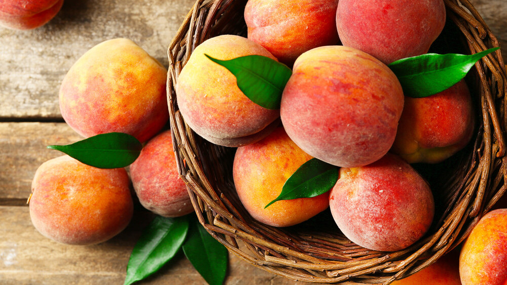 The complete beginner's guide to Peach: What it is, how it works and how to build an audience