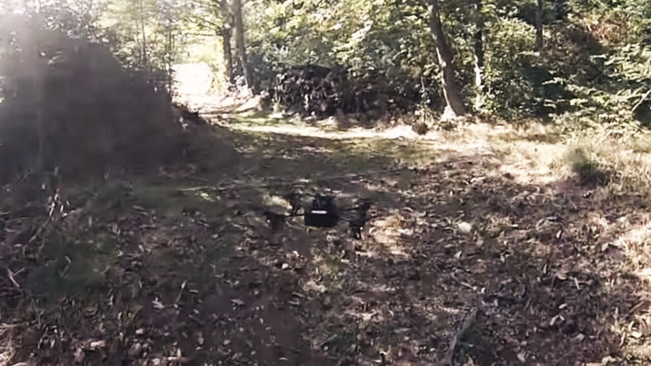 Drones can now follow forest trails to find lost hikers