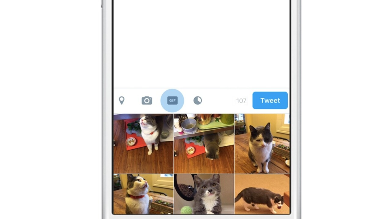 Twitter is adding a dedicated GIF button to make your timeline and DMs more animated