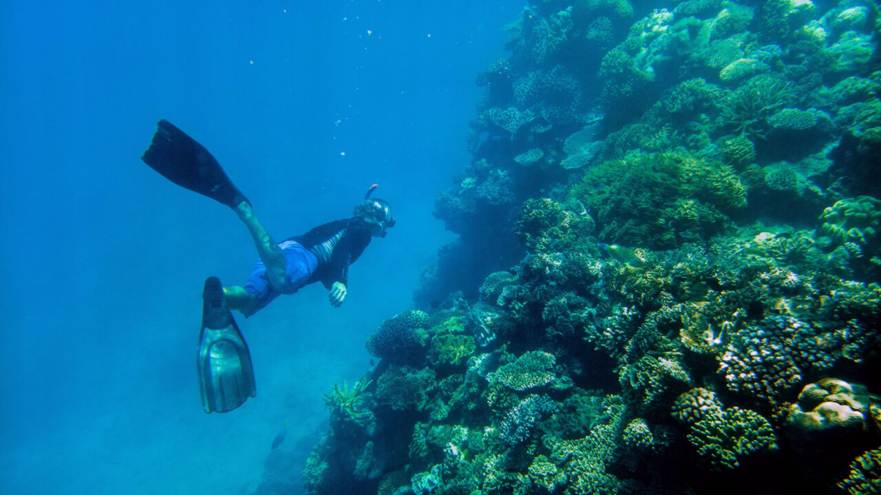 The Great Barrier Reef: On assignment with Nat Geo and Microsoft Lumia