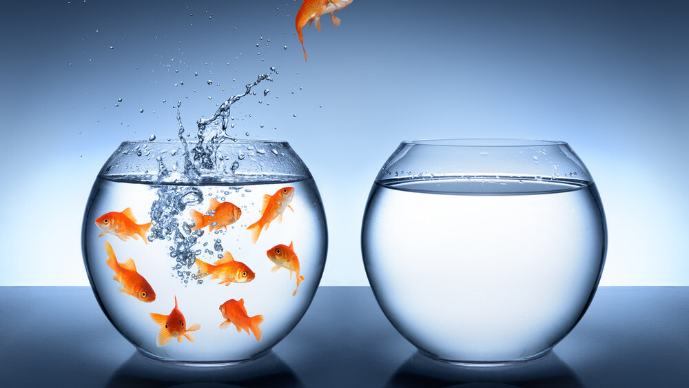 The benefits of being a little fish: How startups can beat big companies at the PR game
