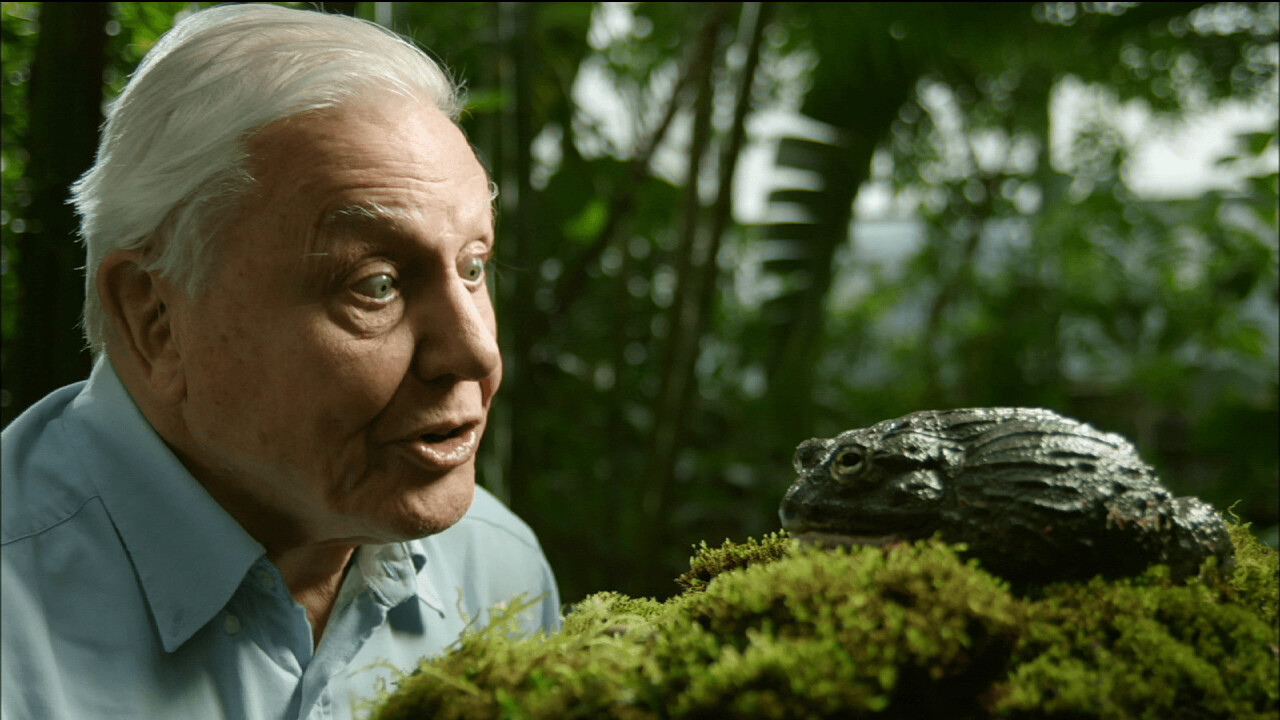 David Attenborough is releasing an app that features 1,000 clips of his own work