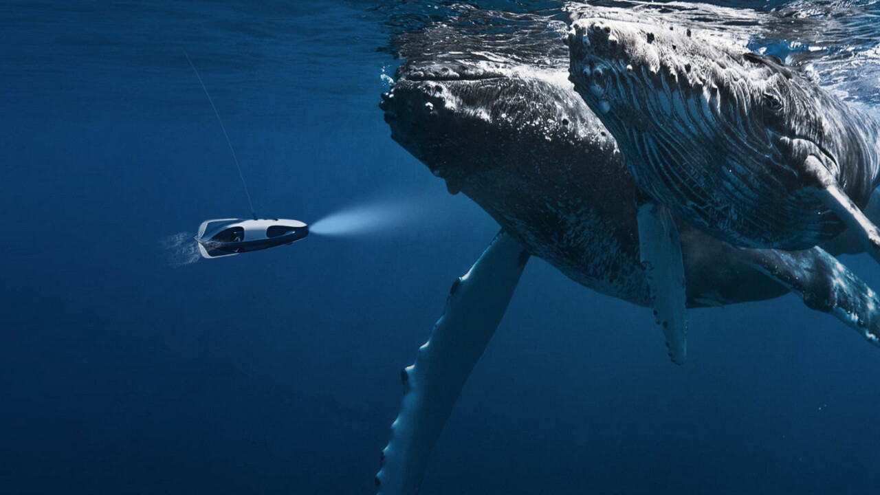 This underwater drone uses sonar to track down fish and film it in 4K