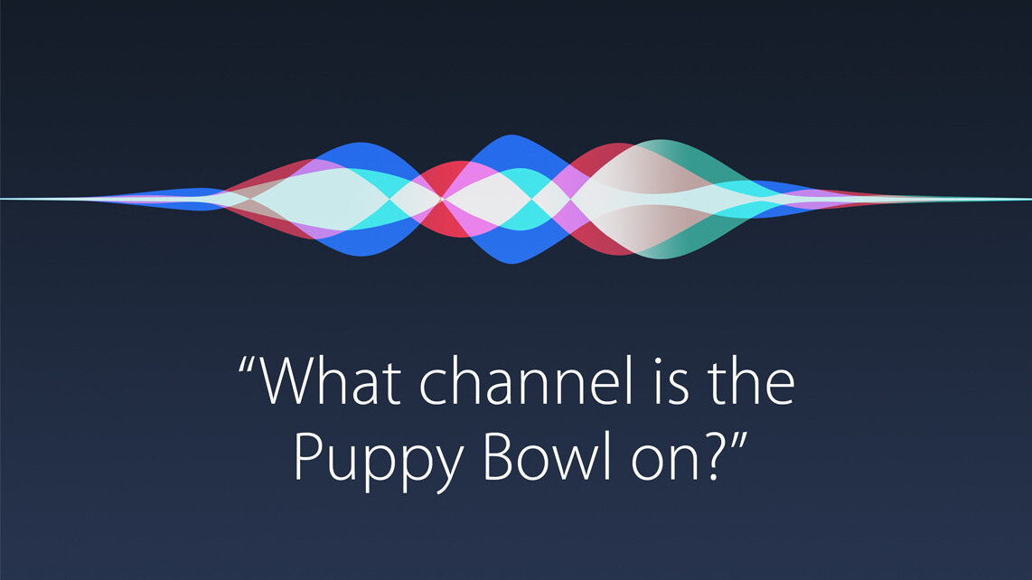 Is voice search set to become the next frontier?