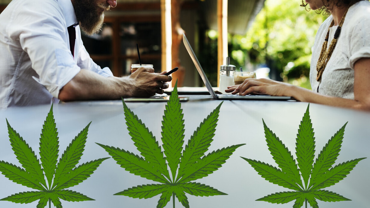 Milking the kush cow – how to benefit from the weed boom from afar