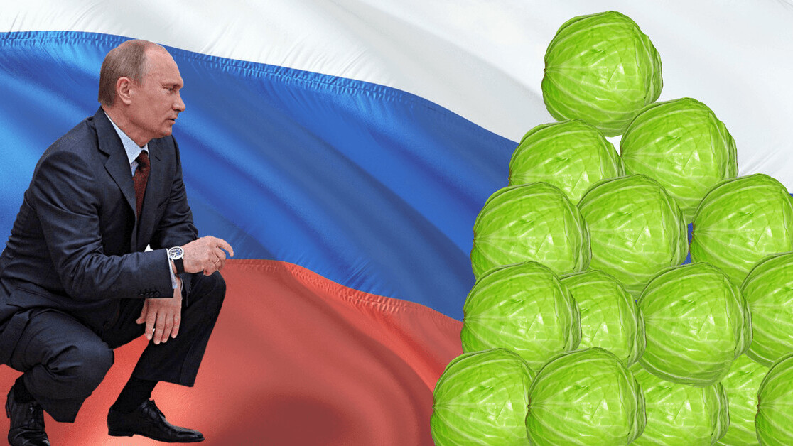 The Russian cabbage conspiracy might be the most boring fake news ever