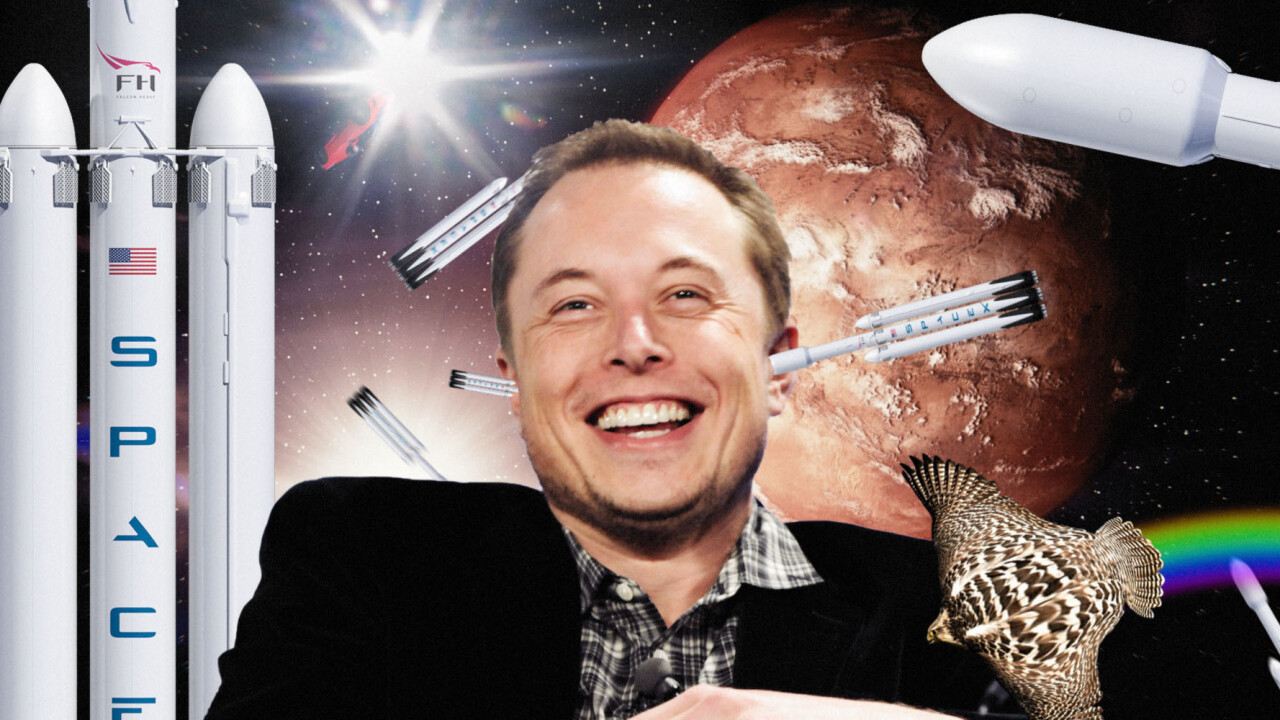 Judge rules Musk's 'Tesla stock too high imo' tweet troublesome, but not enough to sue