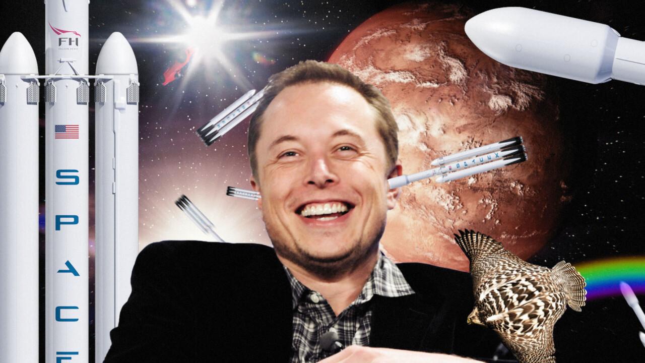 Tesla stock crashes after Elon Musk tweets: 'Tesla stock too high imo'