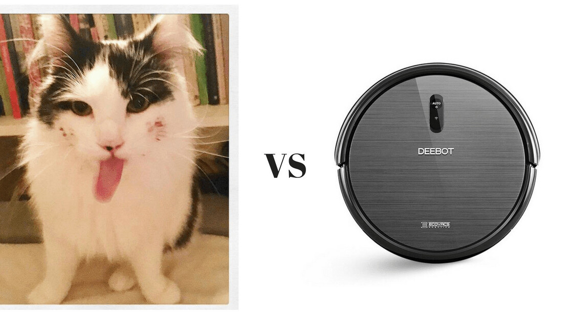 10 ways my robot vacuum cleaner is a way better version of my cat