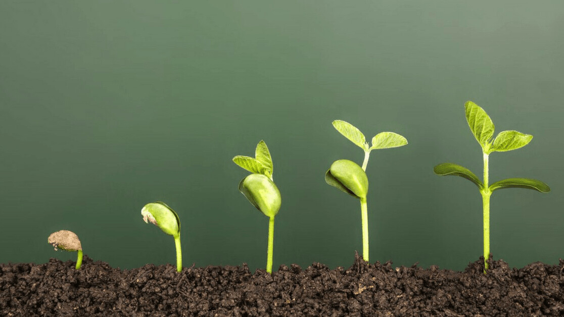 7 tactics you can implement right now to grow your startup