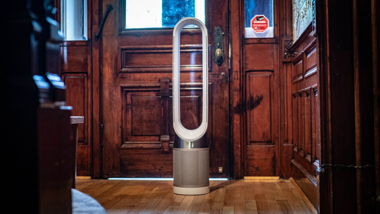 Review: Dyson's Pure Cool air purifier helped relieve my dog's allergies
