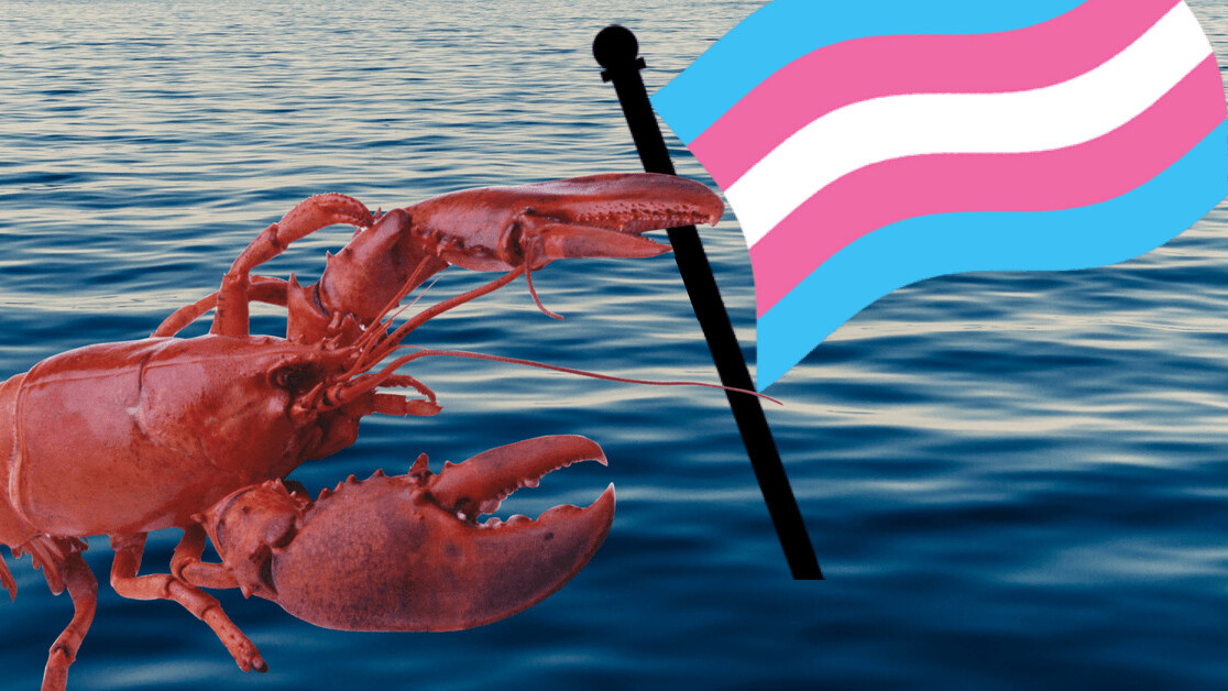 Why the lobster emoji has become an unlikely ally to the trans community