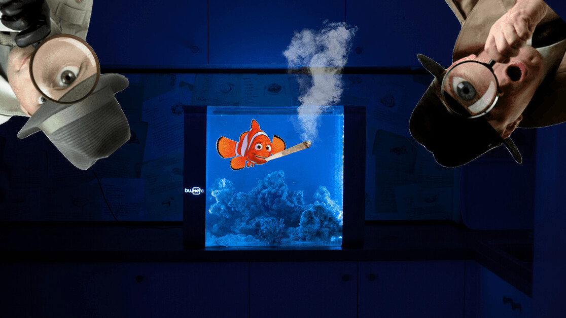The Bluenero is a smart aquarium that lets you spy on your fish