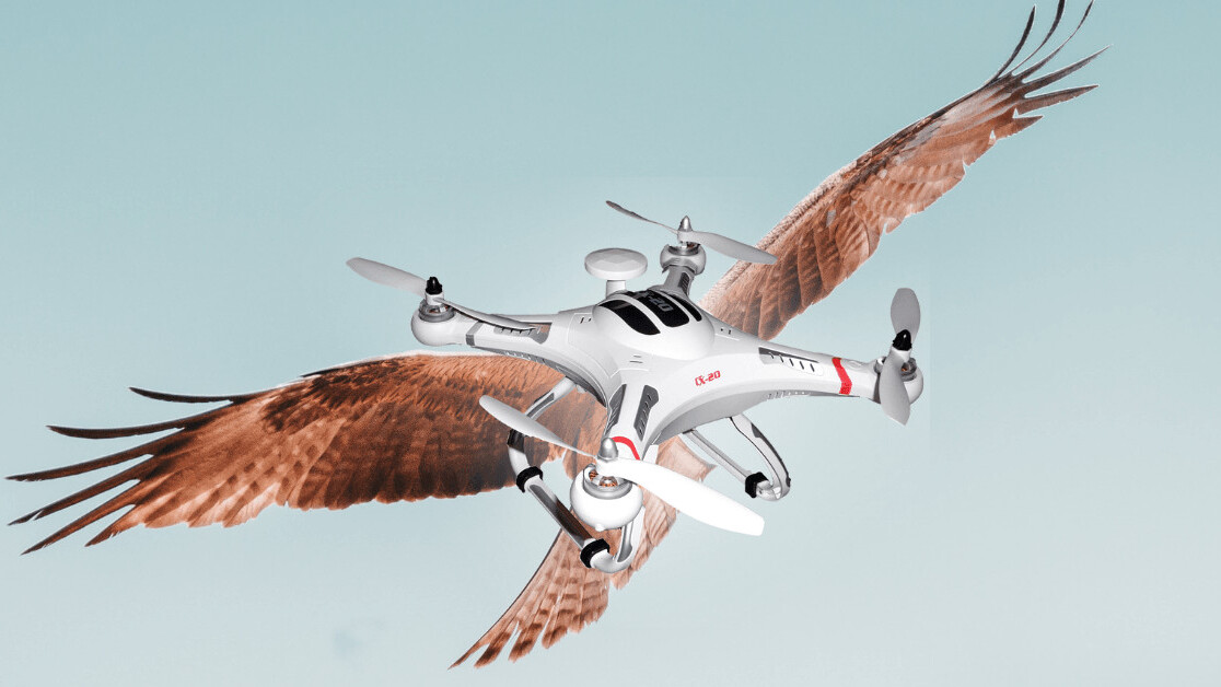 AI could help drones ride air currents like majestic condors